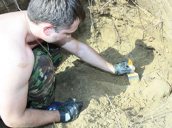Волгоградские поисковики восстановили забытый подвиг героев-десантников