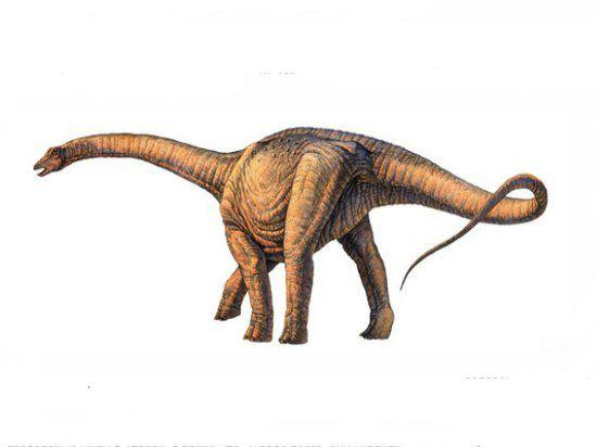 Самый большой динозавр на Земле весил как 14 африканских слонов