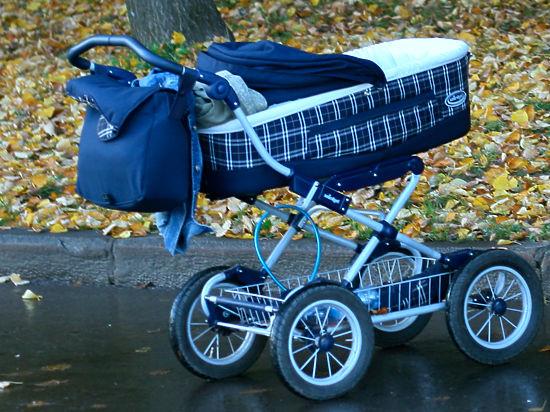 Спиленная ольха придавила коляску с младенцем в московском парке