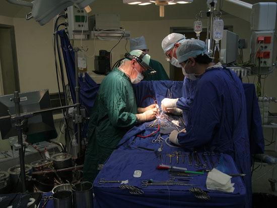 Закон даст зеленый свет трансплантации в России