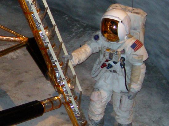 Космонавты выясняют, как на МКС попал планктон