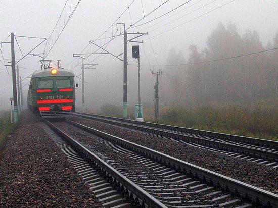 Депутат Госдумы предложил наказывать губернаторов за необеспеченность населения электричками