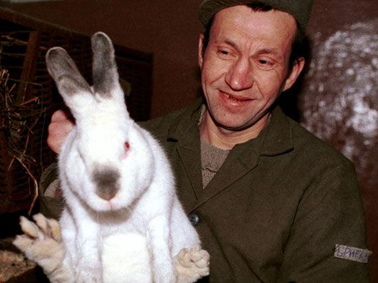 Заключенные предложили детдомам кур и кроликов