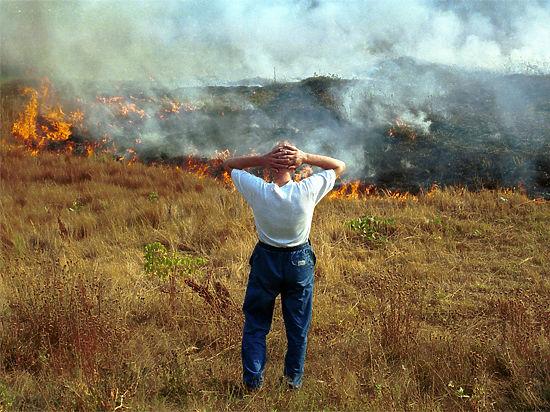 А ветер и беспечность граждан провоцируют возгорания