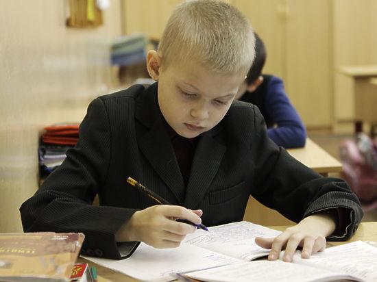 Школяры оказались трудолюбивее взрослых