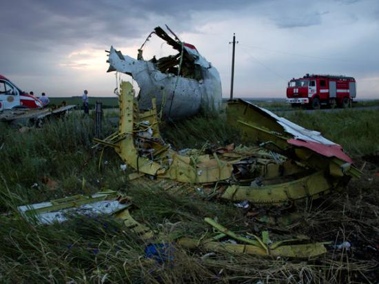 Госдеп США назвал «пропагандой» сведения Минобороны РФ о крушении малайзийского Boeing