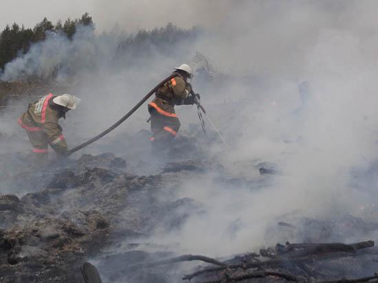 Пожары в Тверской области тушат десантники