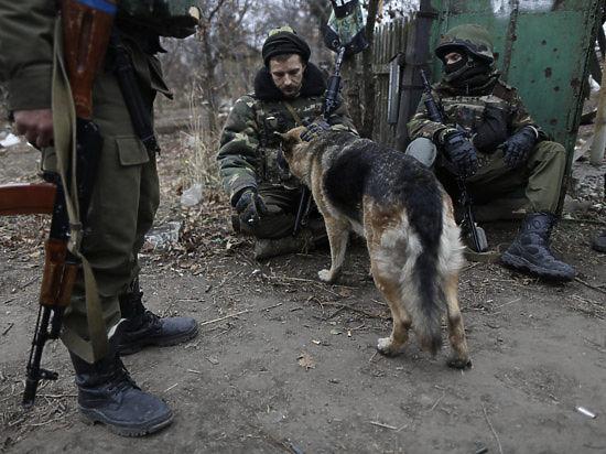 Киев объявил перемирие на Донбассе: ночью шли бои, утром наступил «день тишины»