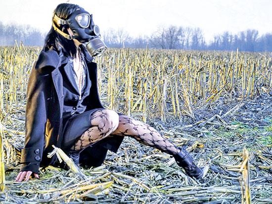 Экологический  пыл