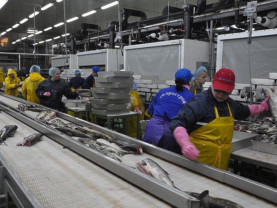 Спецкор «МК» побывал в рыболовецкой житнице страны
