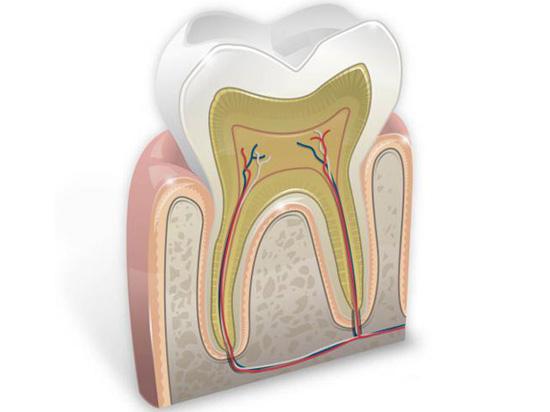 Стоматология «Виртуоз» — забота о зубах день за днем
