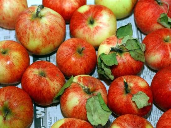 Преображение Господне: почему на Яблочный Спас принято встречать осень