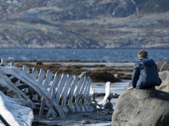 «Левиафан» Андрея Звягинцева признан лучшим иностранным фильмом на фестивале в Мюнхене