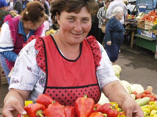 Смогут липодмосковные фермеры заменить наприлавках импортные продукты?