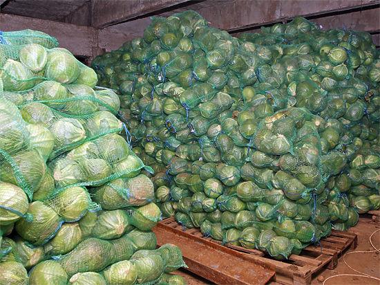 Создание сети распределительных центров сельхозпродукции стимулирует деловую активность аграриев