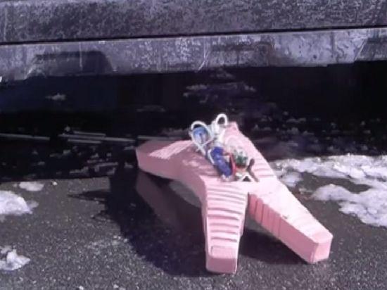 Мягкий робот из Гарварда способен преодолевать огонь и снег