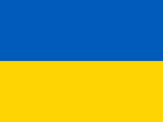 Парубий не говорил о выходе Украины из СНГ, но Киев собирается это сделать