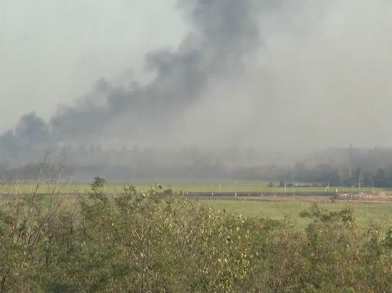 Удар артиллерии почти полностью уничтожил подразделение ВСУ