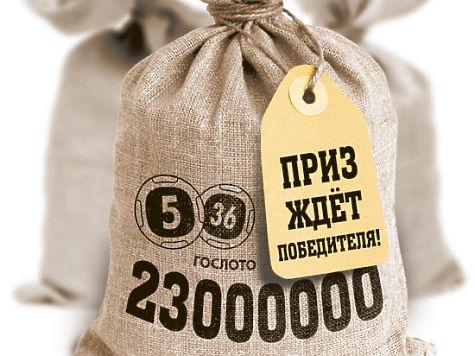 ЭКО, танцы и кусок леса: победители лотерей рассказали, как потратили выигрыш