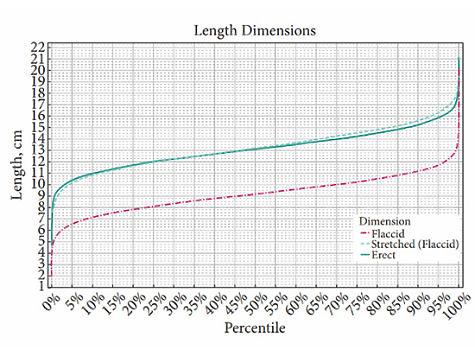 Зависимость размера пениса