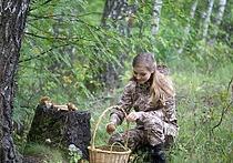 Роспотребнадзор запретил собирать грибы в пакеты и ведра