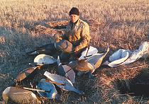 Короток сезон весенней охоты