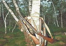 Отцы и ружья: передача опыта и знаний