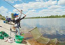 Новый закон о любительском рыболовстве против фиш-карт
